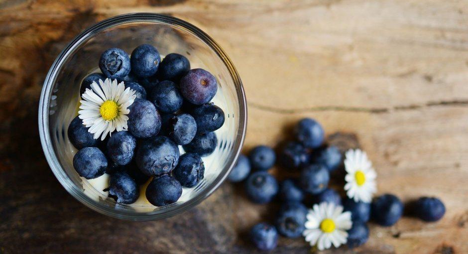 Can ducks eat blueberries